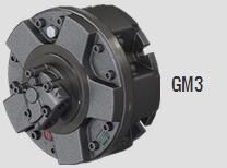 HDD machine big Italy Sai Piston Motor (1)